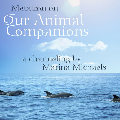 Album art for Our Animal Companions; dolphins swimming in the ocean with album text
