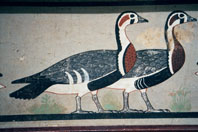 An ancient Egyptian frieze of two geese. This represents companionship and community.